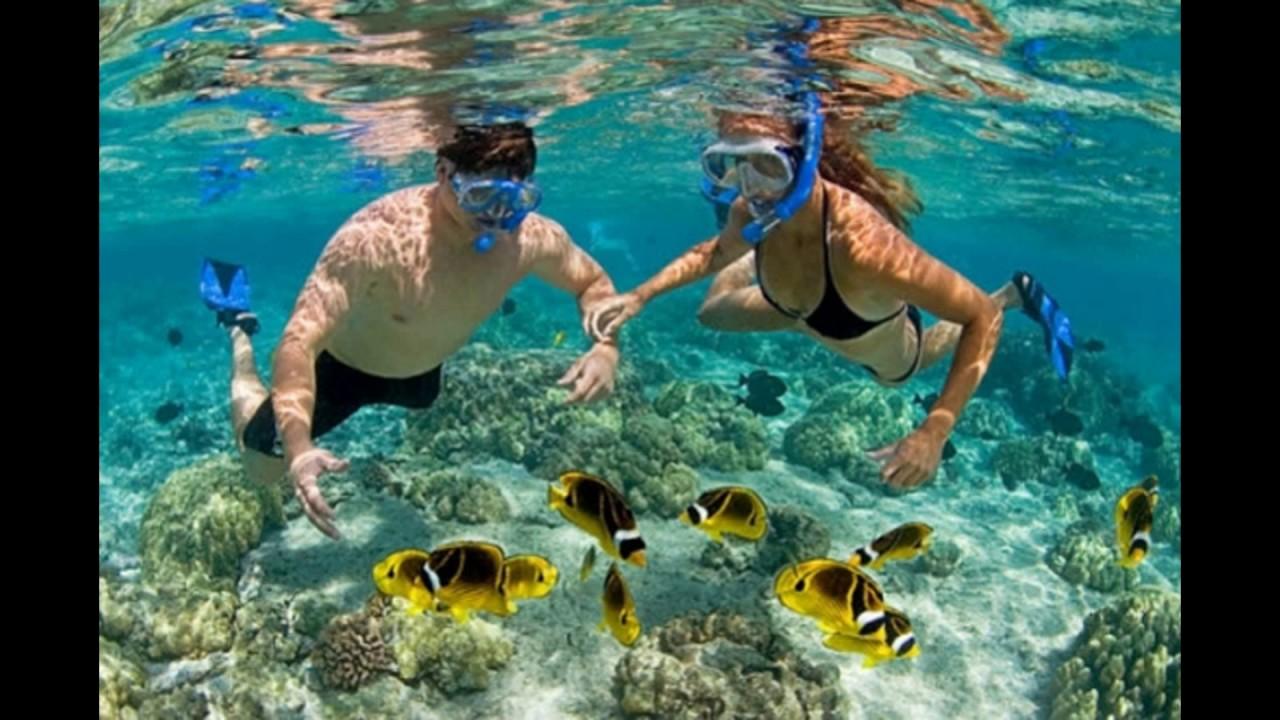 Lặn ngắm san hô tại Cù Lao Chàm