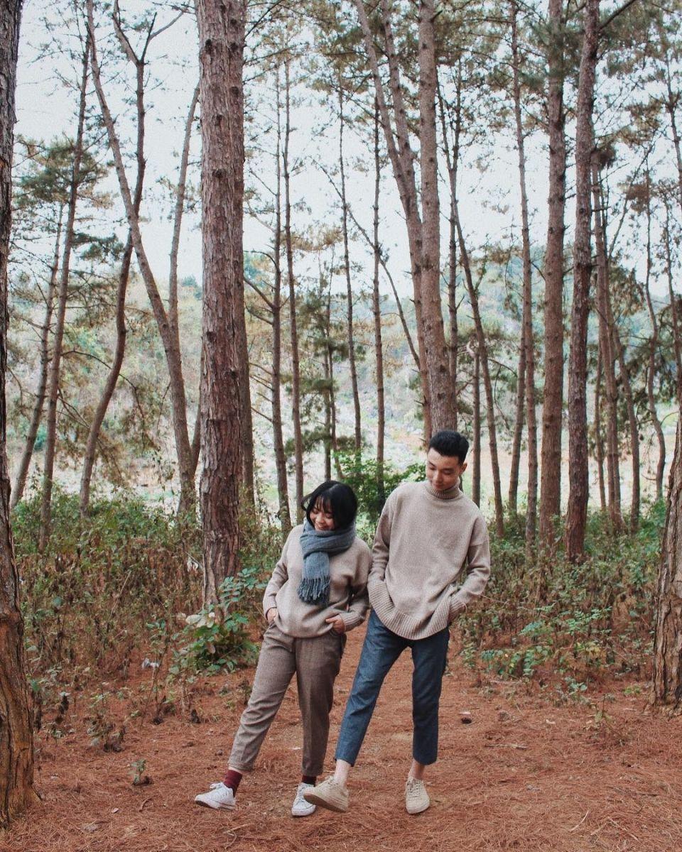 Đến Mộc Châu đừng bỏ qua việc ghé thăm rừng thông Bản Áng nhé!