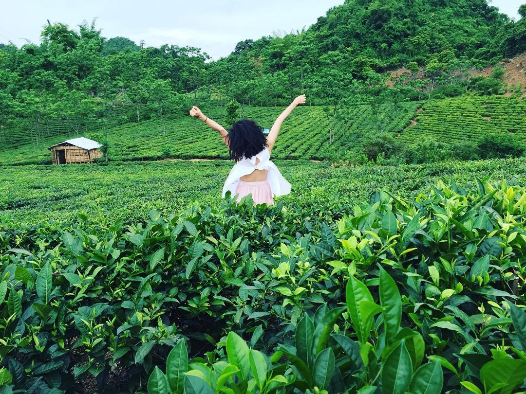 Cao nguyên Mộc Châu thuộc huyện Mộc Châu, tỉnh Sơn La