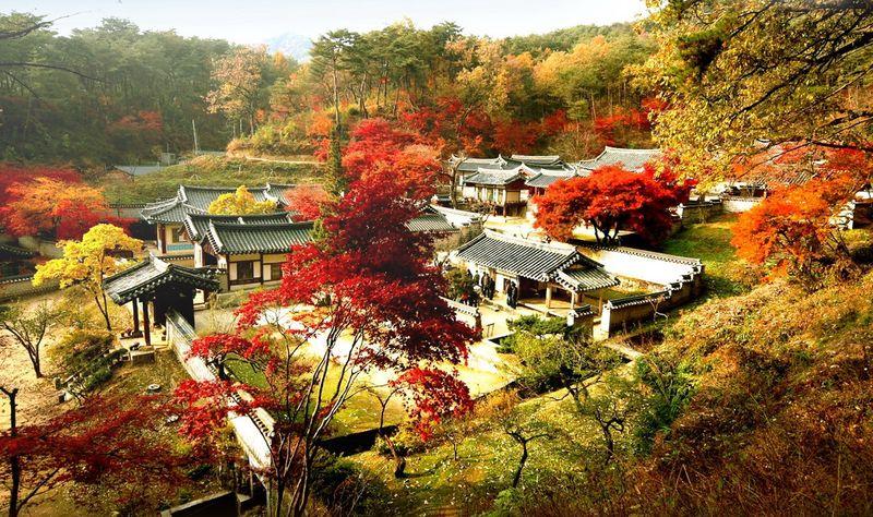 Hà Nội Seoul Everland Yeouido Nami 5 Ngày 4 Đêm